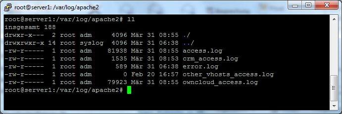 Apache2 Log Separierung per SetEnvIf und CustomLog