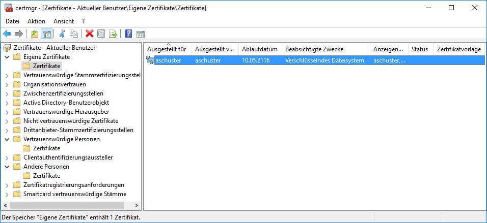 Microsoft Self-Signed EFS Zertifikat