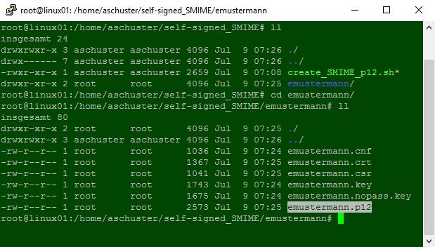 Mit OpenSSL erstellter S/MIME Schlüssel und X.509 Zertifikat in einer .P12/.PFX Datei